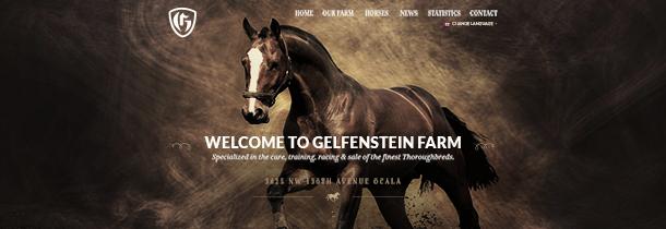 Gelfenstein Farms